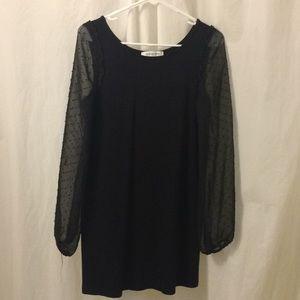 Sheer long sleeved black mini dress